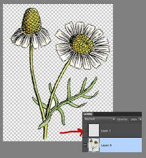 extracting images in Photoshop