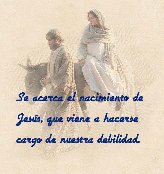 Se acerca el nacimiento de Jesús, que viene a hacerse cargo de nuestra debilidad.