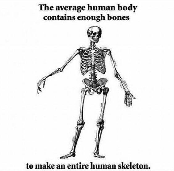 Fascinating Medical Science Fact - Imgur