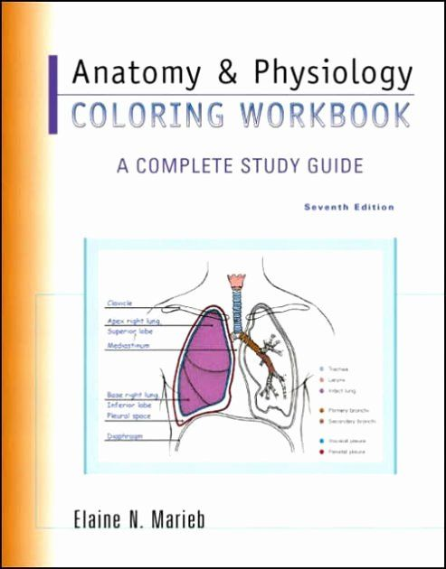 Anatomy And Physiology Coloring Book Fresh Anatomy & Physiology Coloring  Workbook A … Anatomy And Physiology, Anatomy Coloring Book, Online  Anatomy And Physiology