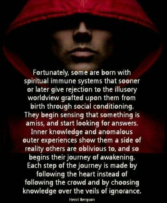 Spiritual immune system. I like that analogy