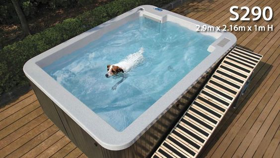 This Is A Pool Your Dog Can Definitely Swim In Because It S Actually For Hydrotherapy If Your Fur Baby Is Having Dog Pool Dog Swimming Pools Hydrotherapy Pool