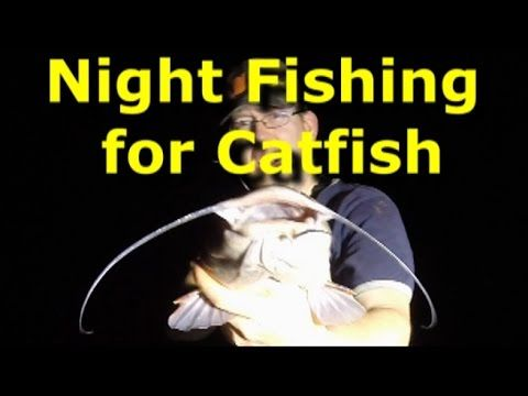 how to cut up a catfish