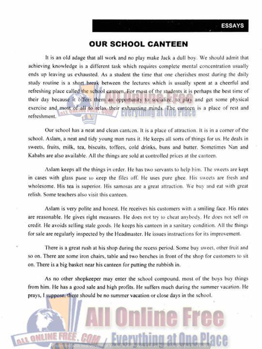 high school english essays india
