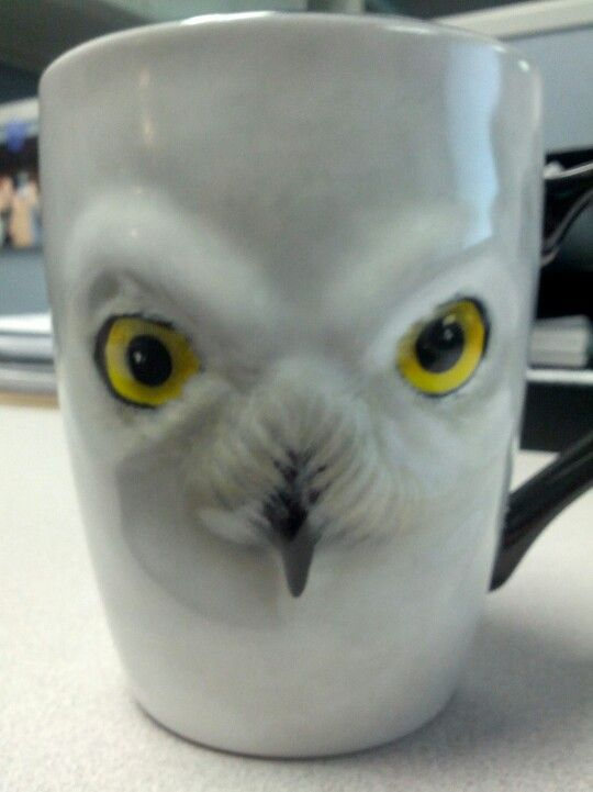 Coffee mug from bff from harry potter world!