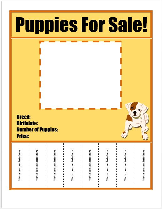 Puppies For Sale Flyer Template Template Pinterest – For Sale Word Template