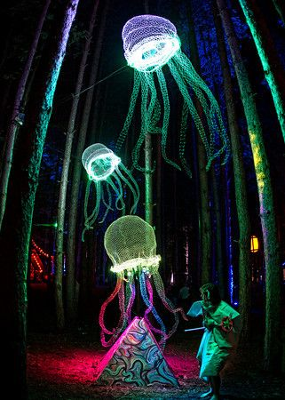 Electric Forest Festival - DTPhotoworks The happiest place on Earth.