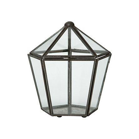 Gas Light Terrarium
