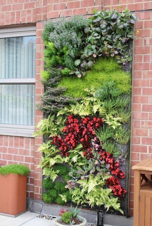 Outdoor Living Wall Plants Vertical Garden Design Vertical