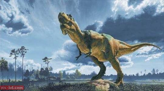 صور الديناصور معلومات وابحاث عن الديناصورات Prehistoric Animals Tyrannosaurus Rex Tyrannosaurus