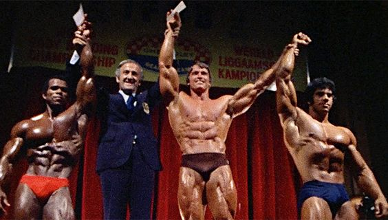 Arnold schwarzenegger blueprint trainer mass training overview arnold schwarzenegger blueprint trainer mass training overview arnold schwarzenegger build muscle and muscles malvernweather Images