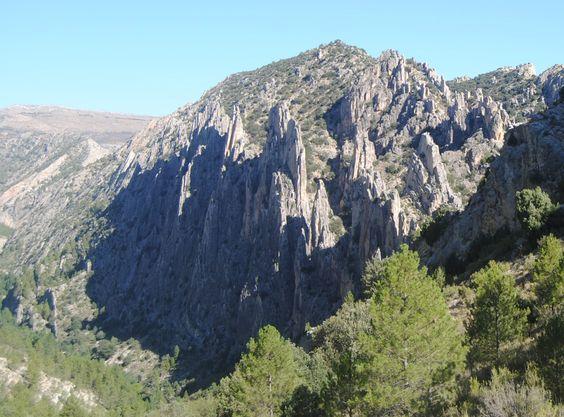 Organos de Montoro en Teruel