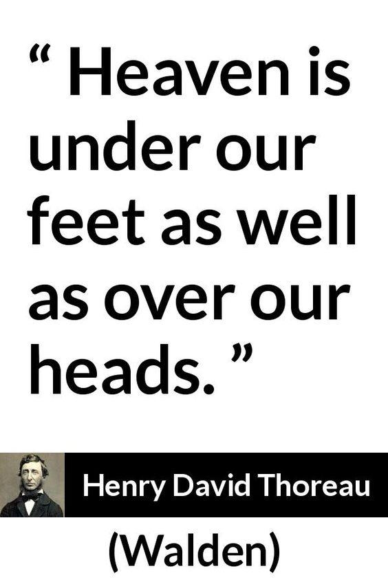 Henry David Thoreau Quotes Thoreau Quotes Henry David Thoreau Quotes Henry David Thoreau