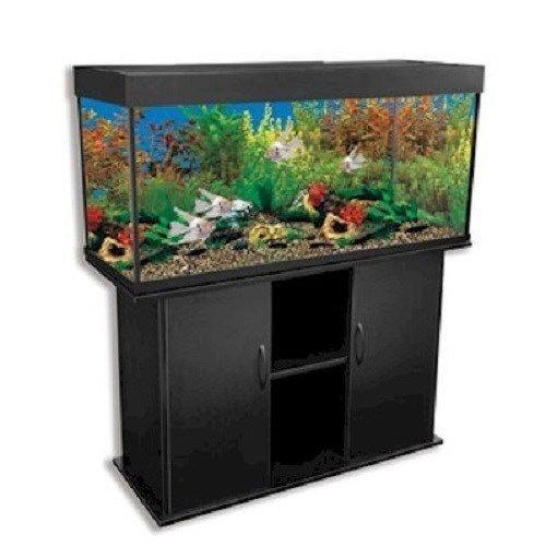 Delta queen iv 66 gallon rectangular fish tank black for Rectangle fish tank