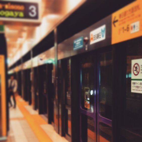 SUBWAY STATION/Tokyo Metro Namboku Line  #東京メトロ #地下鉄 #駅 #subway #tokyo #station by chikaraudon