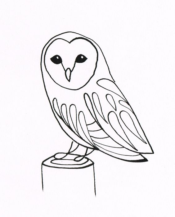 Line drawings of owls simple owl drawing for How to draw a barn easy