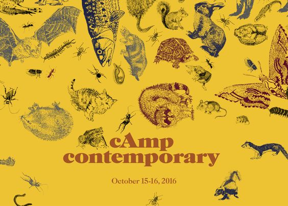 Camp Contemporary - Contemporary Austin: