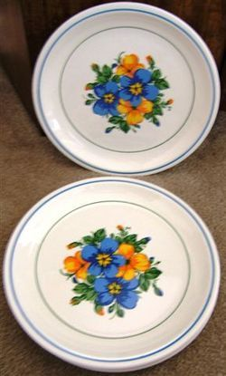 Look what I found on @eBay! http://r.ebay.com/iVwAzp VINTAGE TAYLOR IRONSTONE MORNING GLORY DINNER PLATES 4