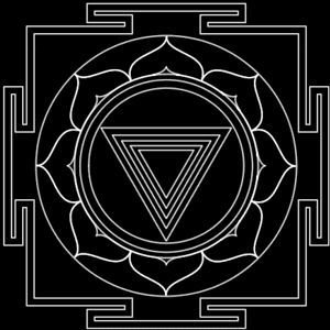 """Kālī - feminine form of kālam (""""black, dark coloured""""). Kāla means """"time"""" and """"black"""", being first creation before light itself. Kalika Purana depicts as """"Adi Shakti"""" (Fundamental Power) """"Para Prakriti"""", beyond nature. Conveys death, destruction, the consuming aspects of reality - a """"forbidden thing"""". Transformation. Distillation of divine wrath into a goddess of salvation, who rids the sadhaka of ignorance & fear. Kali appears as a symbol of triumph over death."""