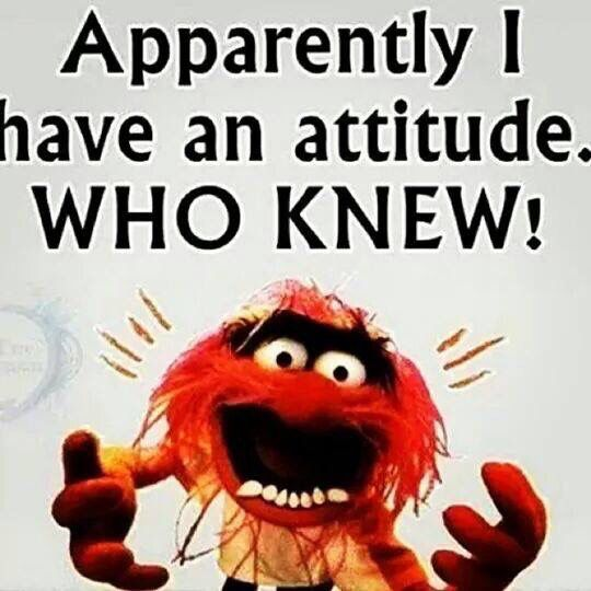 Muppet Quotes Muppetquotes: Animal Muppets Quote