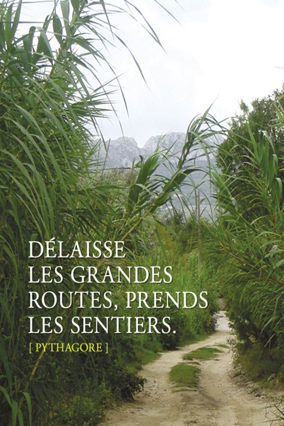 #lespetitscheminsdelavie, #citations, #unpeudedouceur