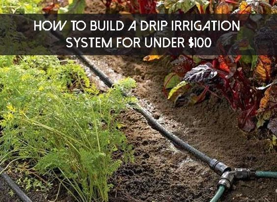 How to Build A Drip Irrigation System For Under $100 - SHTF Preparedness