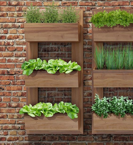 Maceteros verticales ideas para el patio pinterest for Plantas aromaticas para jardin