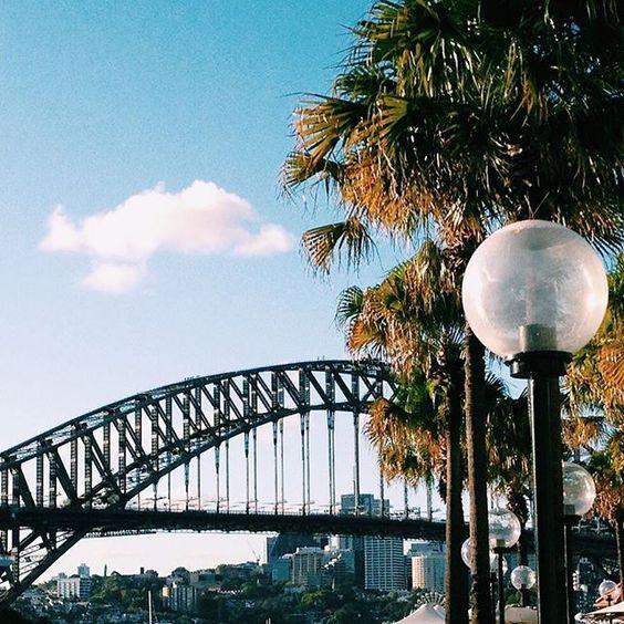 Harbour Bridge and Palm Trees🌴🌴. #mrtravelalotgoesSydney #mrtravelalot #sydney #newsouthwales #australia #tb #trowback #instatravel #igtravel #travelblogger #travelgram #travel #traveler #tourism #wanderlust #travelphotography #photography #instaaustralia #aussie #harbour #bridge #palms
