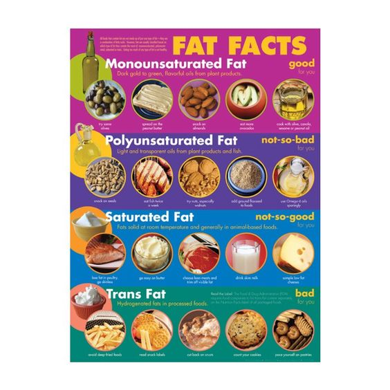 fats   fat facts see link     foodpyramid   6
