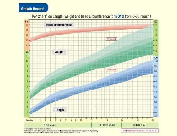 Indian Boys  Years HeightWeightHead Circumference Chart