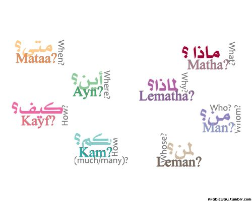 Learn to Speak and Understand Arabic Like a Native, While Cutting Your ...