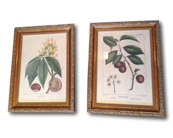 A personal favorite from my Etsy shop https://www.etsy.com/listing/268253714/collection-of-two-framed-vintage