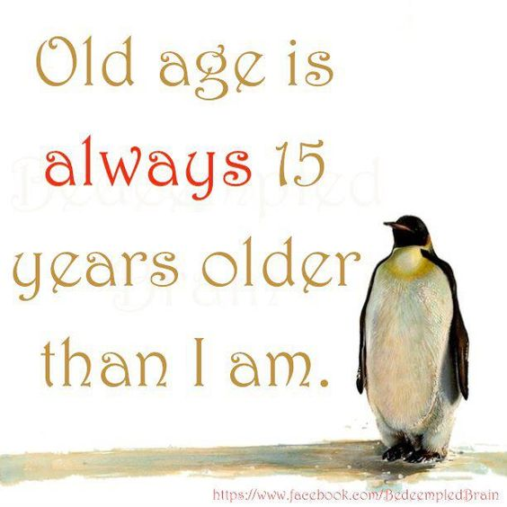 107 Best Old Age Humor Images On Pinterest: Funny Quote About Age. For More Funny Short Quotes Visit