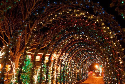 lights on entrance arbours....: Christmas Time, Favorite Places Spaces, Pretty Lights, Holiday Lights, Wonderful Time, Christmas Lights, Winter Wonderland, Fairy Lights