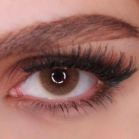 Hidrocor Grafite Graphite 12 Months Wear Green Contacts Lenses