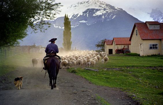 Gaucho in Patagonia: