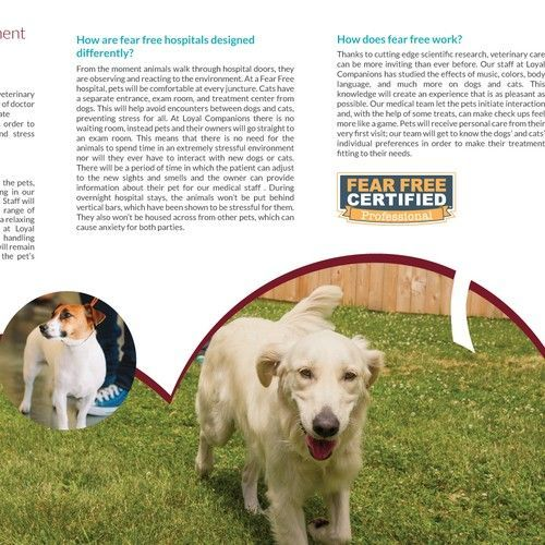 Create An Engaging Brochure For My Animal Hospital Pet Resort