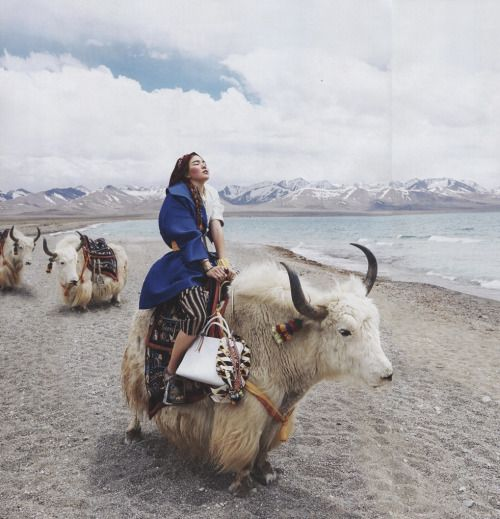 "daraartisans: "" STYLE A nomad in Tibet """