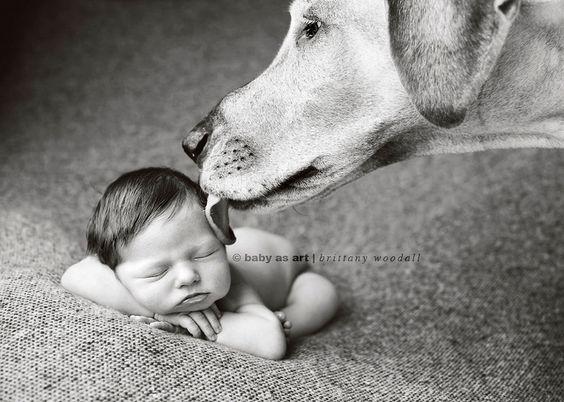 tiny baby + humongous dog ='s Erin Vey's new baby girl. | Flickr - Photo Sharing!