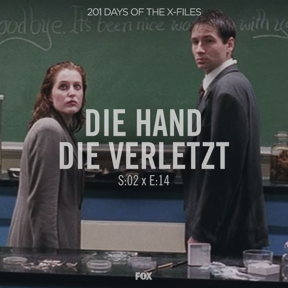 "Stream or grab a DVD and watch ""Die Hand Die Verletzt"" with us."
