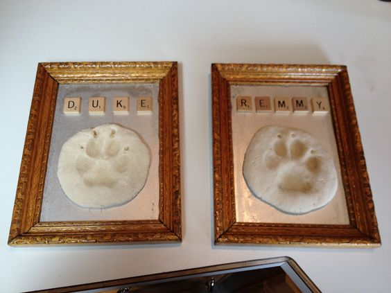 Dog Paw Print Mold My Ideas Pinterest Dog Paw Prints