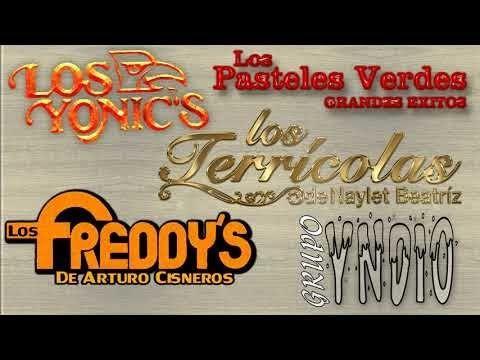 Freddy S Terricolas Indio Pasteles Verdes Yonics 40 Recuerdos Del Ayer Mix Exitos Youtube Canciones Musica Romantica Pastelitos Verdes