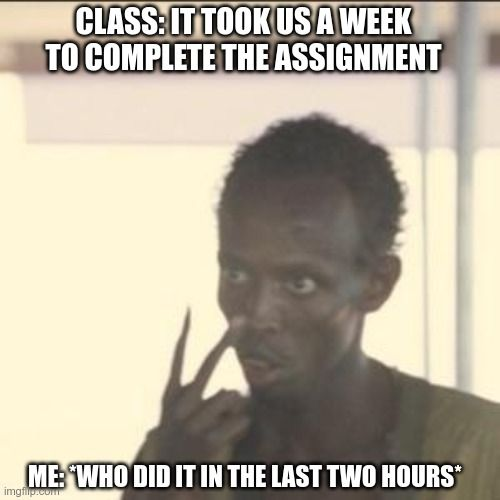 Assignment Help Student Memes Political Science Student Memes
