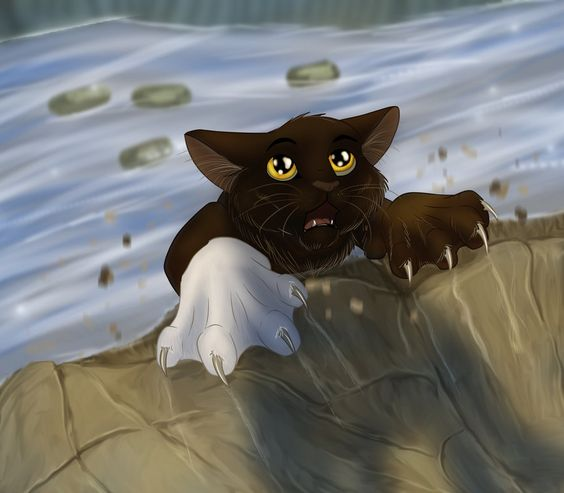 Warriors Fire And Ice Book: Whiteclaw's Death. (He's The Poor Riverclan Cat That Died