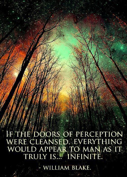 """""""Si las puertas de la percepción fueran depuradas todo aparecería ante el hombre tal cual es... infinito."""" William Blake"""