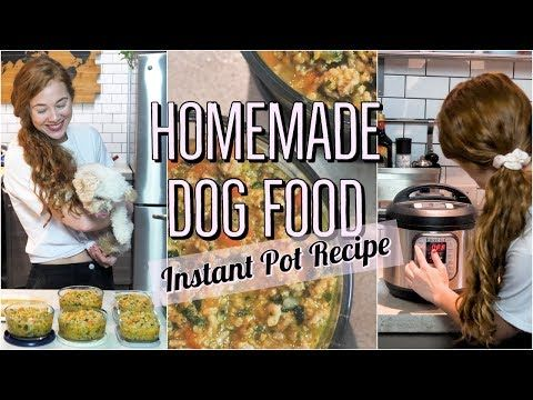 Homemade Healthy Dog Food Recipe Using The Instant Pot Cooking