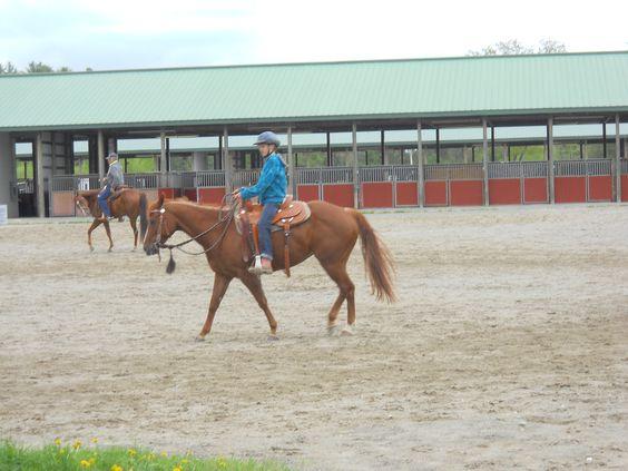 Riding a Quarter Horse.
