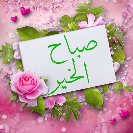 Pin By زهرة علي On صباحيات٢ Good Morning Images Flowers Good Morning Arabic Good Morning Beautiful Images