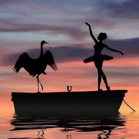 كان يشبه الشفق و صوته كصوت الناي حين يعانق أمواج البحر كانت تشبه الغسق و صوتها كصوت الريح حين يلامس ش Silhouette Art Silhouette Painting Silhouette Photography