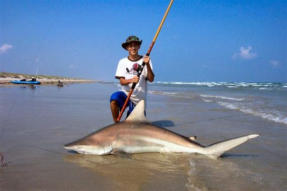 Pinterest the world s catalog of ideas for Shark fishing gear for beach